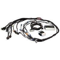 HALTECH Sport 2000 ¨C Toyota 2JZ Terminated Engine Harness Kit (HPI6)