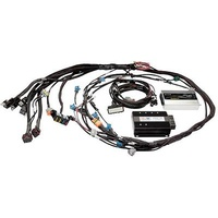HALTECH Sport 2000 ¨C Ford 5L (89-95) Terminated Engine Harness Kit