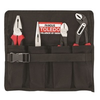 TOLEDO 4 Pc Plier Set Supplied In Reusable Tool Roll TPSA02